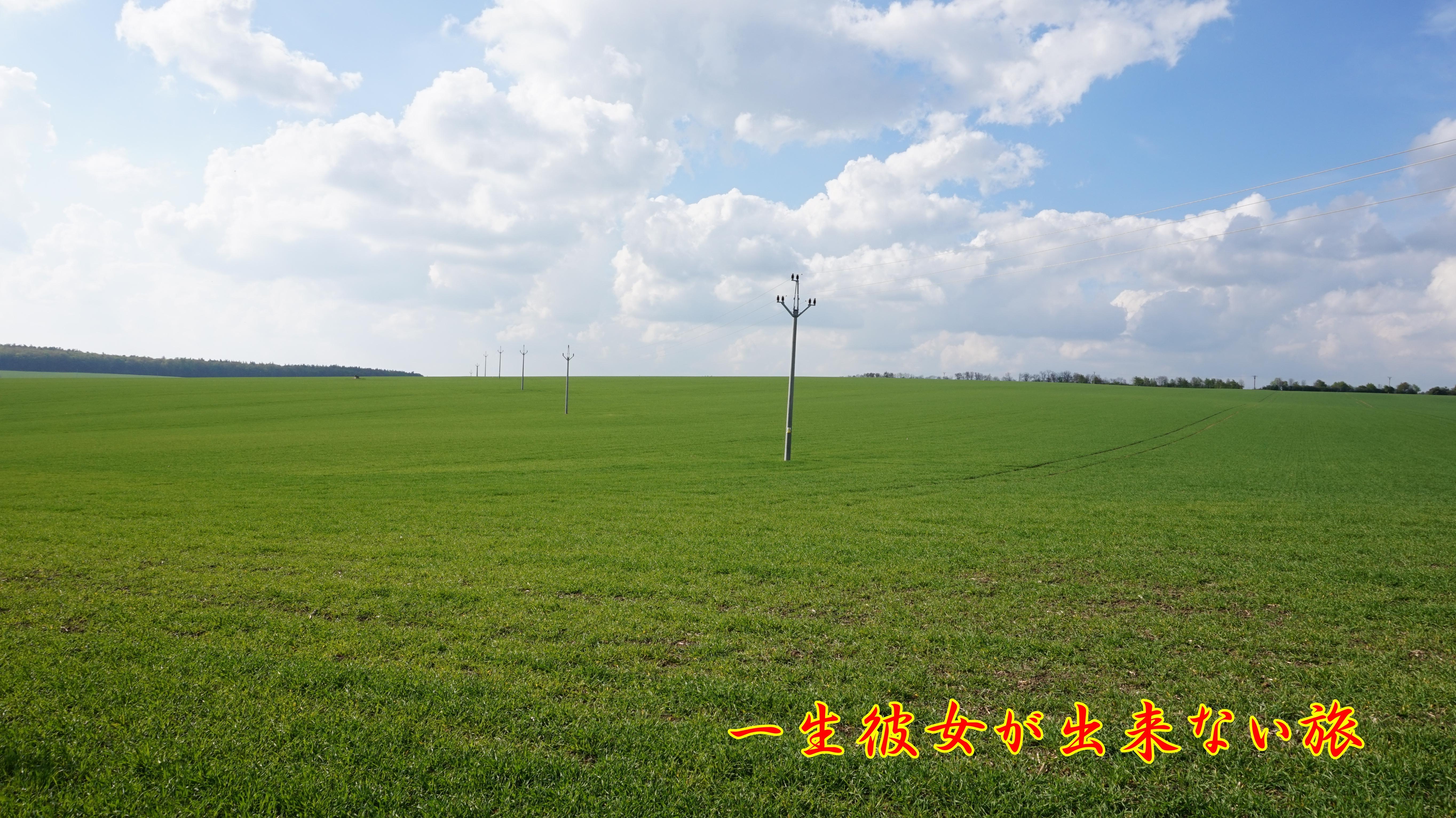 モラビィア 大草原